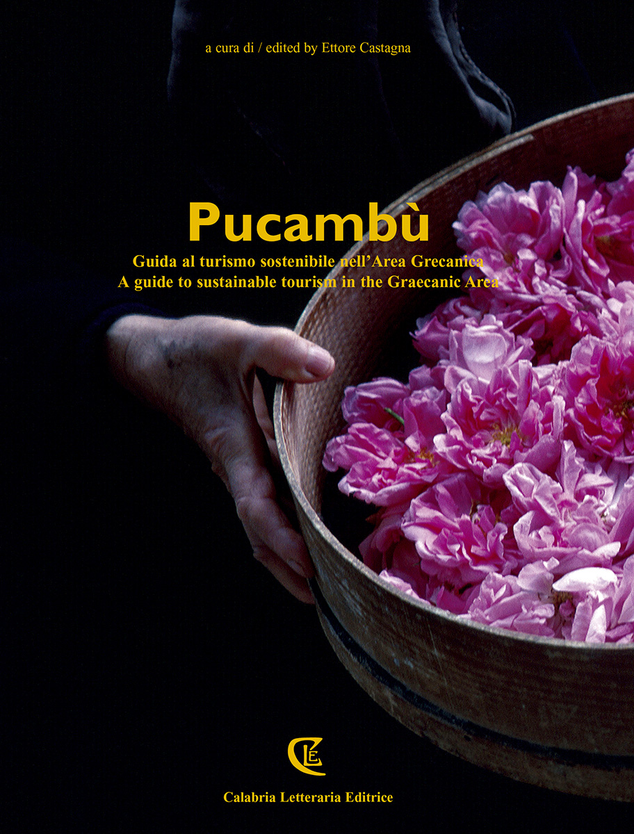 2014 Pucambu cover BASSA