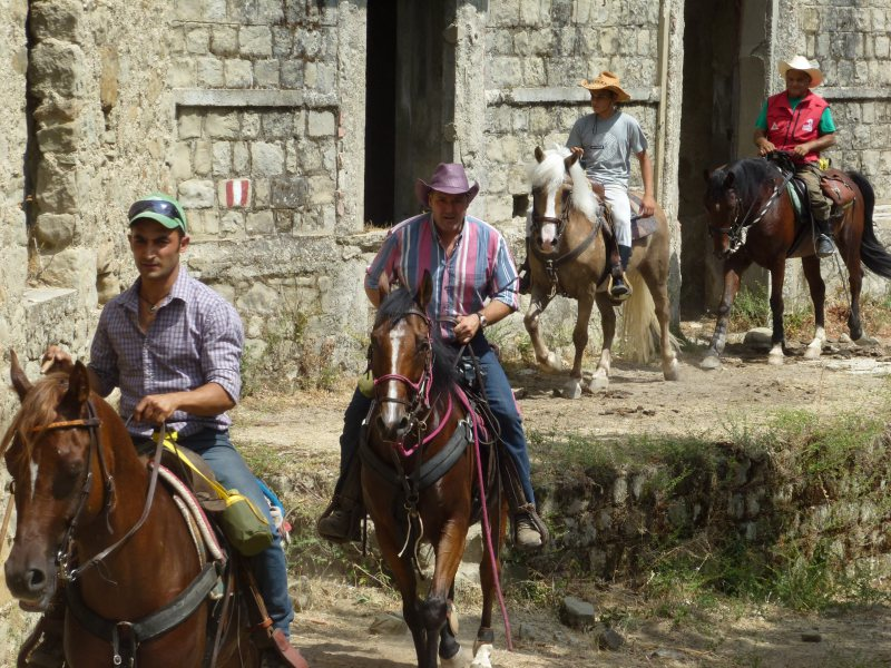 TREKKING ON HORSEBACK from Ghorio di Roghudi to Gambarie