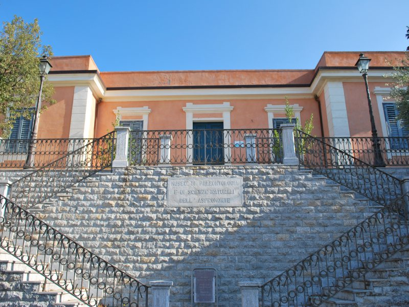 Civic Museum of Palaeontology in Bova