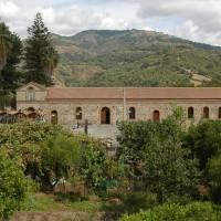 Cultura - Musei - Museo Olio - Frantoio Jacopino 1 - Bagaladi (Enzo Galluccio)